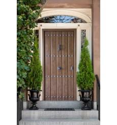 Porte d'entrée SANDRO 90 cm 45 mm en acier inoxydable en plusieurs couleurs