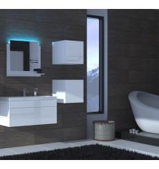 Meuble salle de bain ALIUS 28 - A28-HG-W-2 blanc brillant