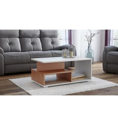 Table basse avec niches AVIDIA noyer